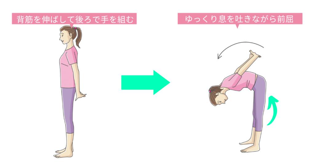 立った状態のストレッチ「背中、腰、脚の裏側のストレッチ」