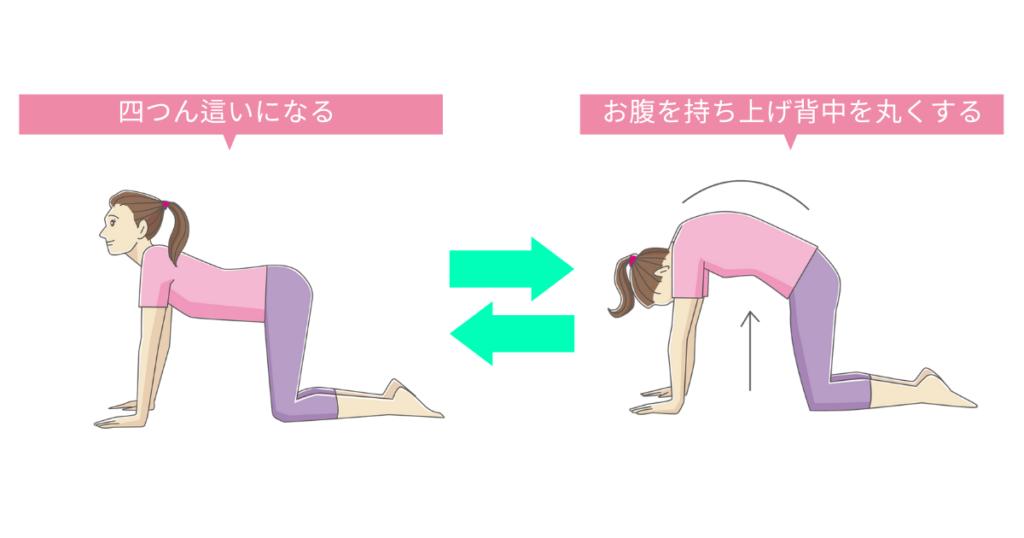 ストレッチの一例「腹筋の筋トレ」
