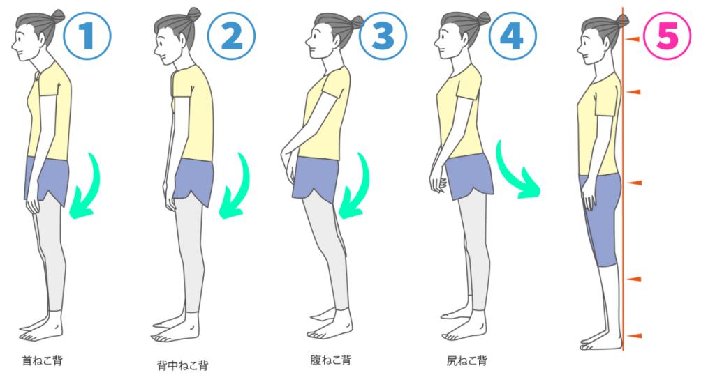 姿勢の見本