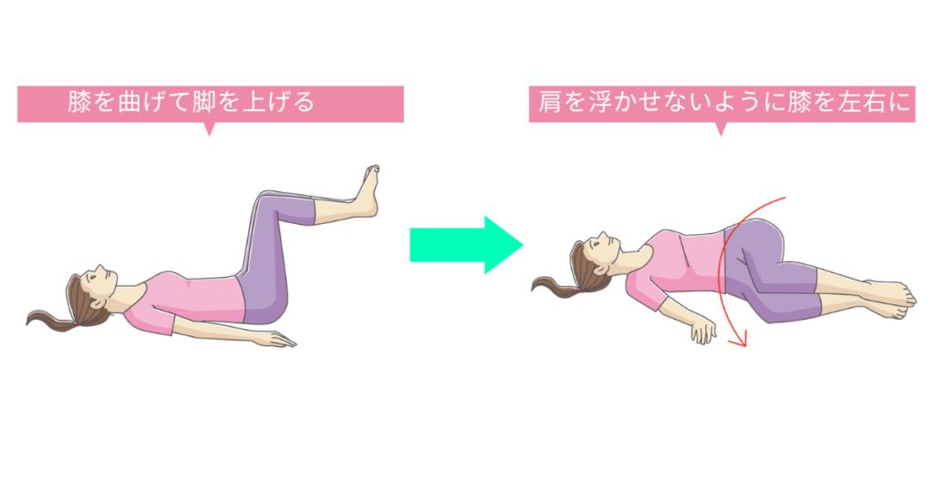 ストレッチの一例「腰と背中のストレッチ」